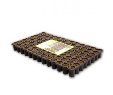Eazy Plug® Stecklingsblöcke Tray à 104 Stk Groß