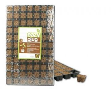 Eazy Plug® Stecklingsblöcke Tray à 77 Stk