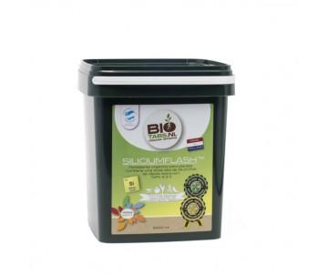 BioTabs Silicium Flash 2,5 L